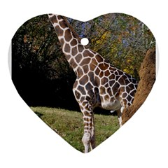 giraffe Heart Ornament (Two Sides)