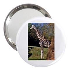 giraffe 3  Handbag Mirror