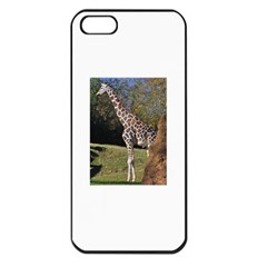 Giraffe Apple Iphone 5 Seamless Case (black)