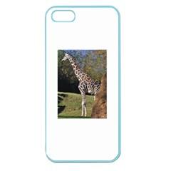 giraffe Apple Seamless iPhone 5 Case (Color)