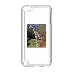 giraffe Apple iPod Touch 5 Case (White)