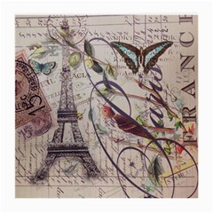 Paris Eiffel Tower Vintage Bird Butterfly French Botanical Art Glasses Cloth (Medium)