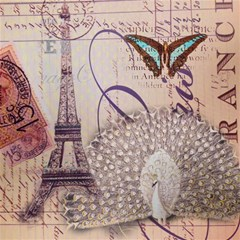 White Peacock Paris Eiffel Tower Vintage Bird Butterfly French Botanical Art Canvas 16  X 16  (unframed)