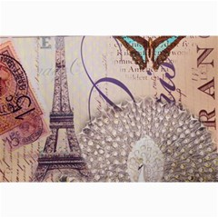 White Peacock Paris Eiffel Tower Vintage Bird Butterfly French Botanical Art Canvas 20  X 30  (unframed)