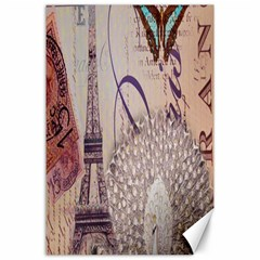 White Peacock Paris Eiffel Tower Vintage Bird Butterfly French Botanical Art Canvas 24  X 36  (unframed)