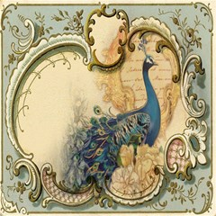 Victorian Swirls Peacock Floral Paris Decor Canvas 20  X 20  (unframed)