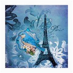 Girly Blue Bird Vintage Damask Floral Paris Eiffel Tower Glasses Cloth (medium, Two Sided)