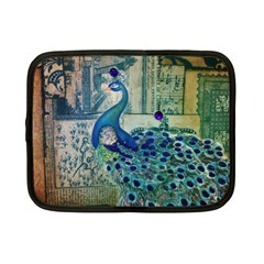 French Scripts Vintage Peacock Floral Paris Decor Netbook Case (Small)