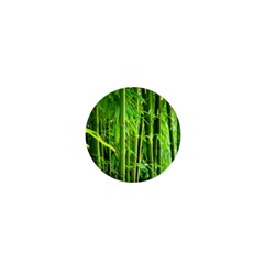Bamboo 1  Mini Button Magnet