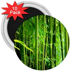 Bamboo 3  Button Magnet (10 Pack)