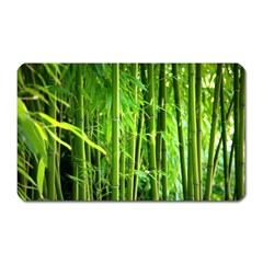 Bamboo Magnet (Rectangular)