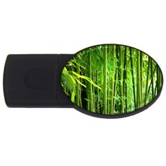 Bamboo 1GB USB Flash Drive (Oval)