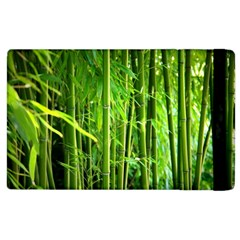 Bamboo Apple Ipad 3/4 Flip Case