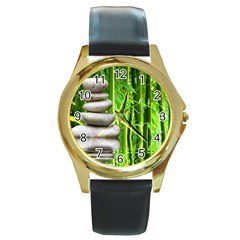 Balance  Round Metal Watch (Gold Rim)
