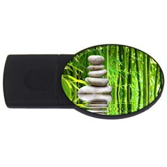 Balance  2GB USB Flash Drive (Oval)
