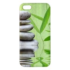 Balance iPhone 5S Premium Hardshell Case