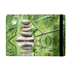 Balance Apple iPad Mini Flip Case
