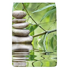 Balance Removable Flap Cover (large)