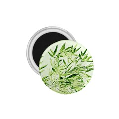 Bamboo 1.75  Button Magnet