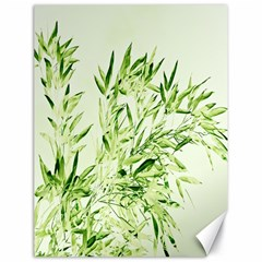 Bamboo Canvas 18  x 24  (Unframed)