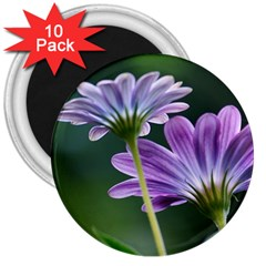 Flower 3  Button Magnet (10 pack)