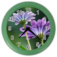 Flower Wall Clock (color)
