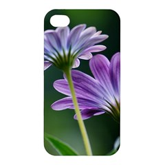 Flower Apple Iphone 4/4s Hardshell Case