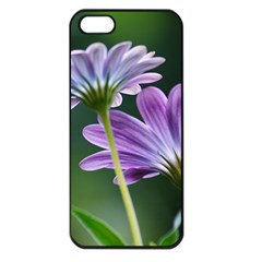 Flower Apple iPhone 5 Seamless Case (Black)