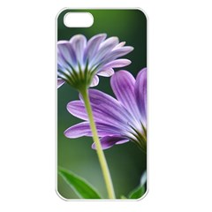 Flower Apple iPhone 5 Seamless Case (White)