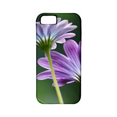 Flower Apple Iphone 5 Classic Hardshell Case (pc+silicone)