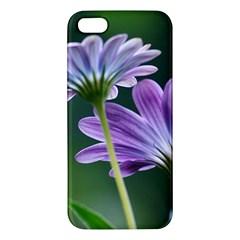 Flower iPhone 5S Premium Hardshell Case