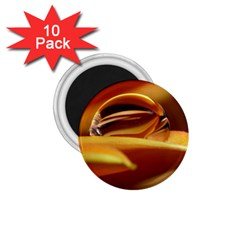Waterdrop 1.75  Button Magnet (10 pack)