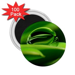 Waterdrop 2.25  Button Magnet (100 pack)