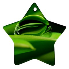 Waterdrop Star Ornament (two Sides)