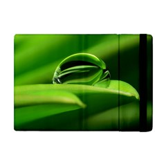 Waterdrop Apple iPad Mini Flip Case