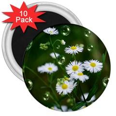 Magic Balls 3  Button Magnet (10 Pack)