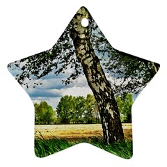 Trees Star Ornament