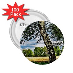 Trees 2 25  Button (100 Pack)
