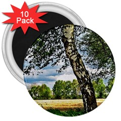 Trees 3  Button Magnet (10 pack)