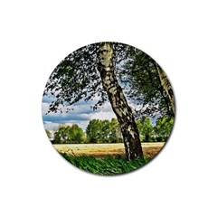 Trees Drink Coasters 4 Pack (Round)