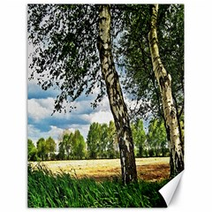 Trees Canvas 18  x 24  (Unframed)