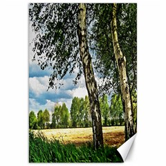 Trees Canvas 20  x 30  (Unframed)
