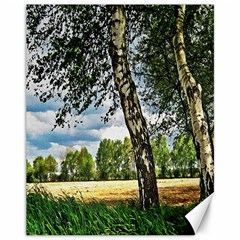 Trees Canvas 11  x 14  (Unframed)