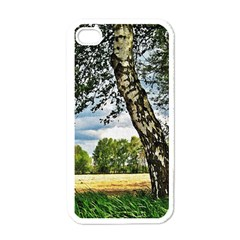 Trees Apple iPhone 4 Case (White)
