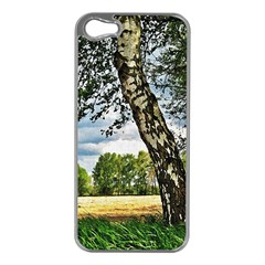 Trees Apple iPhone 5 Case (Silver)