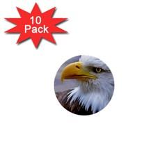 Bald Eagle 1  Mini Button (10 pack)
