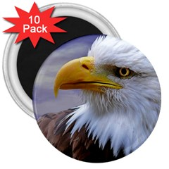 Bald Eagle 3  Button Magnet (10 pack)
