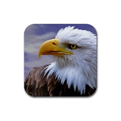 Bald Eagle Drink Coasters 4 Pack (Square)