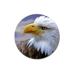 Bald Eagle Magnet 3  (round)