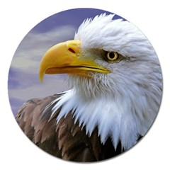 Bald Eagle Magnet 5  (Round)